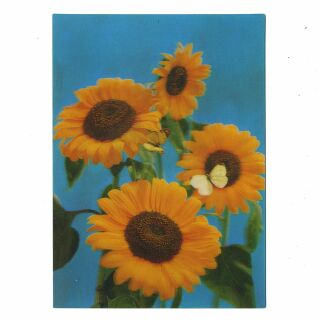 3D Lentikular Postkarte - Blume 2 - Karte mit Effekt