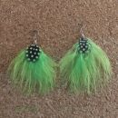 Feather Earrings 1 large > neon-green