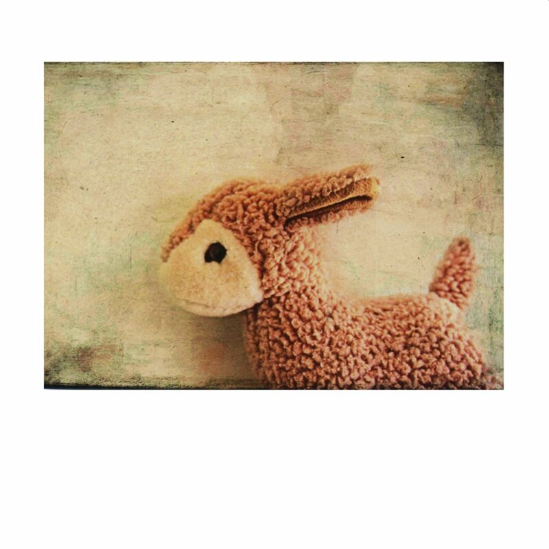 Postkarte - Forgotten Sheep - Henri Banks